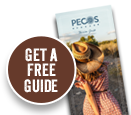 Get the free guide